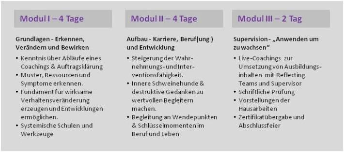 Module der Coachingausbildung